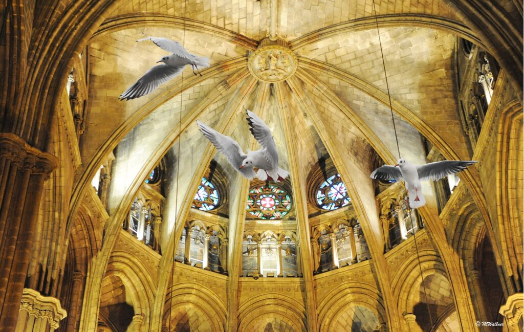 крипта собора в Барселоне