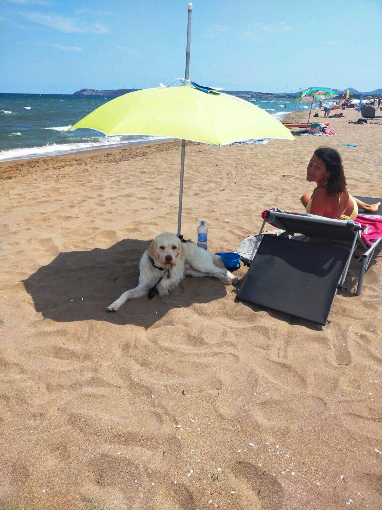 Росес лучшие пляжи на Коста Брава