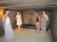 Фото из отзыва экскурсии: Монсеррат и винные погреба